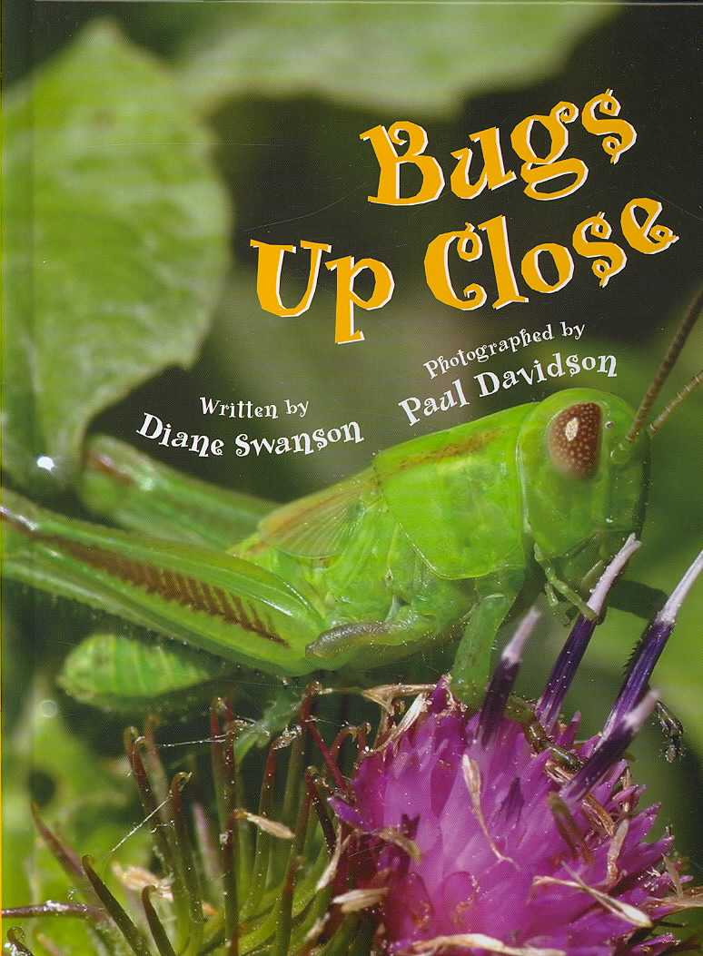 Bugs Up Close By Swanson, Diane/ Davidson, Paul (ILT)